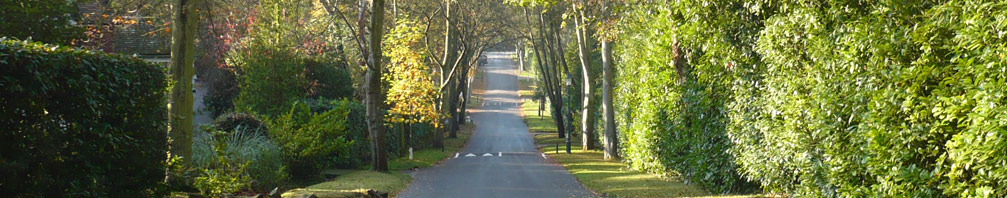 The Wentworth Estate - Banner 4